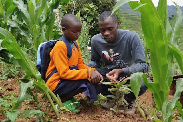 RWCA Tree Planting